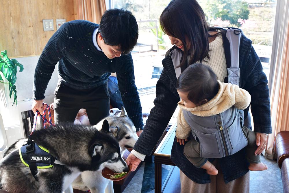 犬_6.jpg