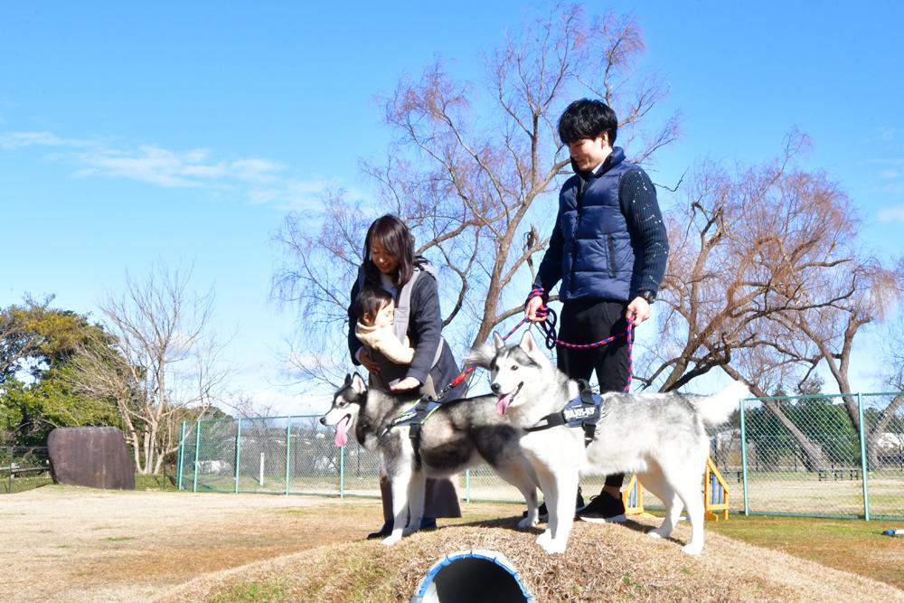 犬_8.jpg